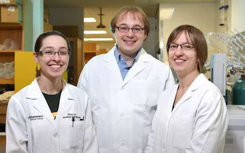 Scientists identify mechanisms driving gut bacterial imbalance and inflammation