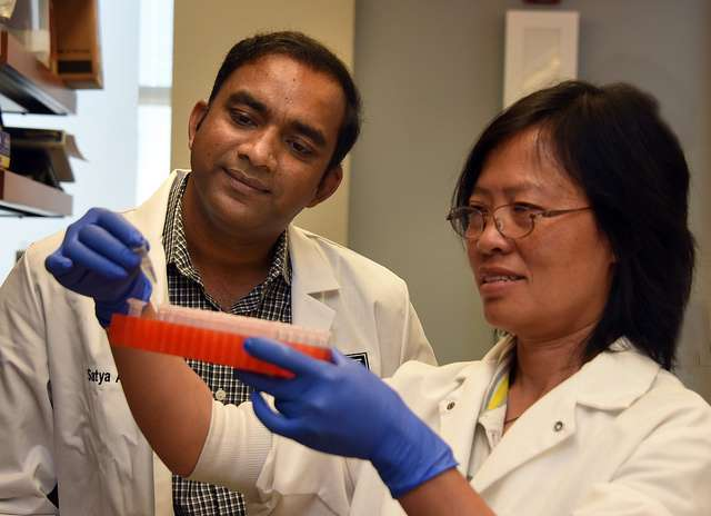 Scrib protein identified as a natural suppressor of liver cancer