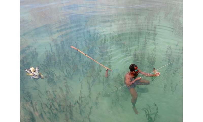 Seagrass is a key fishing ground globally