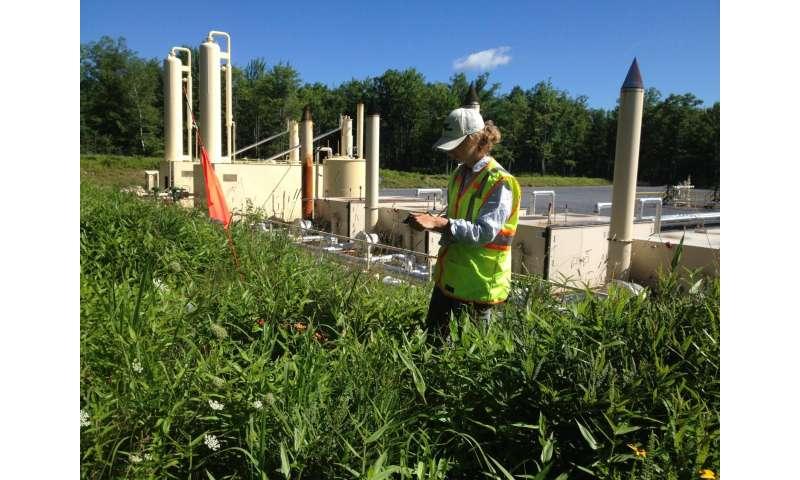 Shale gas development spurring spread of invasive plants in