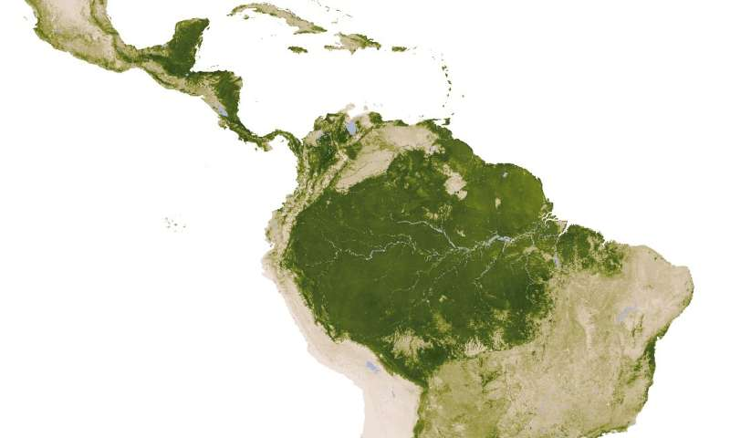 Shallow soils promote savannas in South America