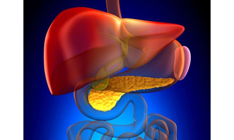 Similar defects ID'd for T2DM, chronic pancreatitis and diabetes