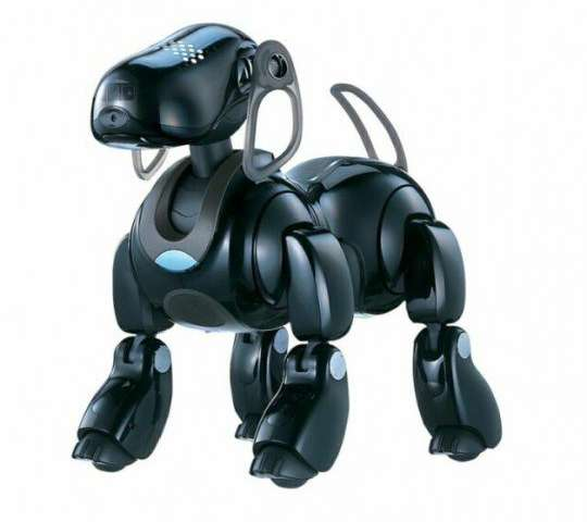 Sony's Aibo seemed tough act to follow but stay tuned