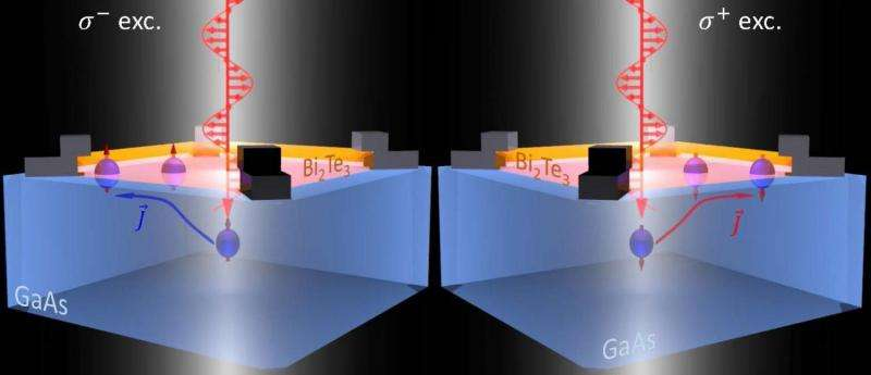 Spinning electrons open the door to future hybrid electronics