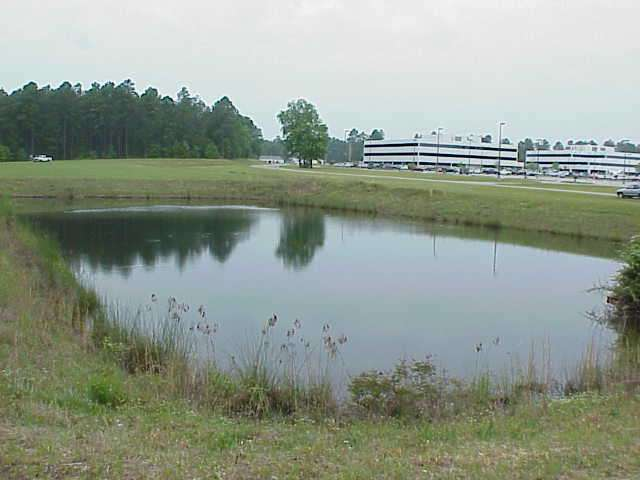 Stormwater retention ponds may not protect surface waters for Surface fish ponds