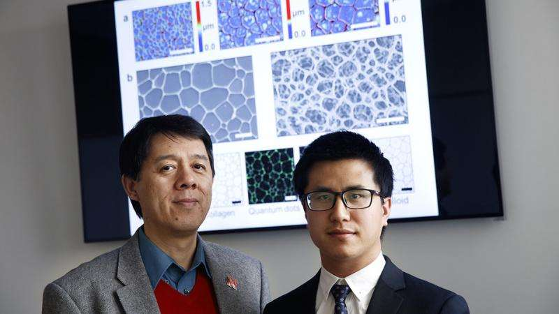 Study looks to ice for fabricating useful porous materials