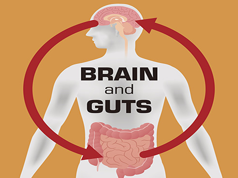 Study shows link between microbiome in the gut and parkinson's