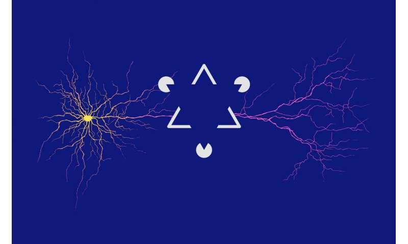 [Image: synapsesinth.jpg]