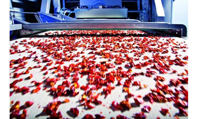 System sorts granular bulk materials faster and more accurately