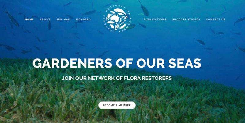 Taking the battle to save seagrass online