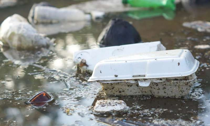 Tax plastic takeaway boxes, the scourge of the oceans