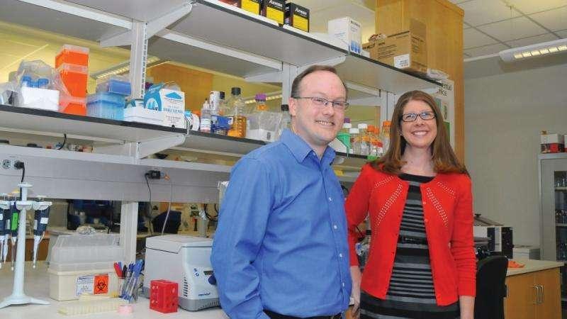 Team reaches milestone in effort to treat bone disorders