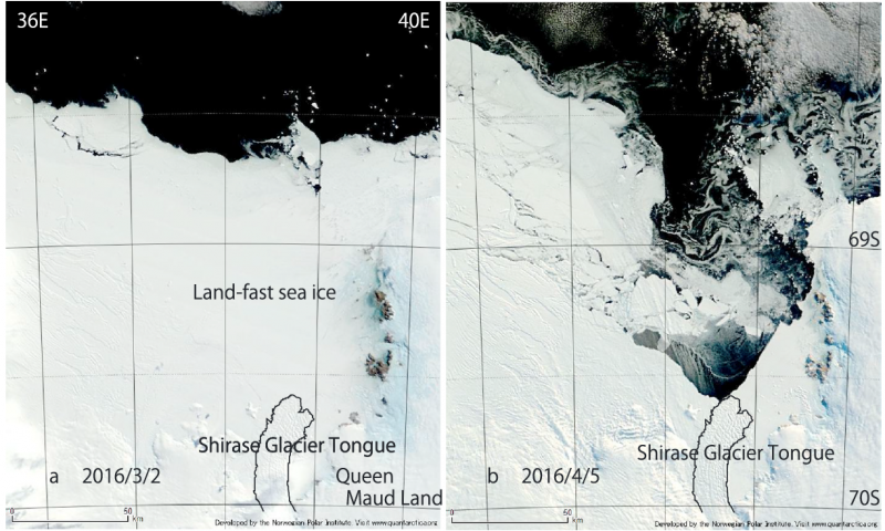 Teleconnection between the tropical Pacific and Antarctica