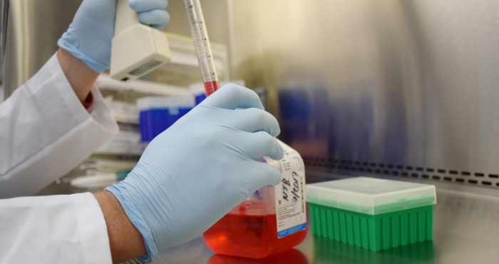 The first live-attenuated vaccine candidate completely protects against Zika infection