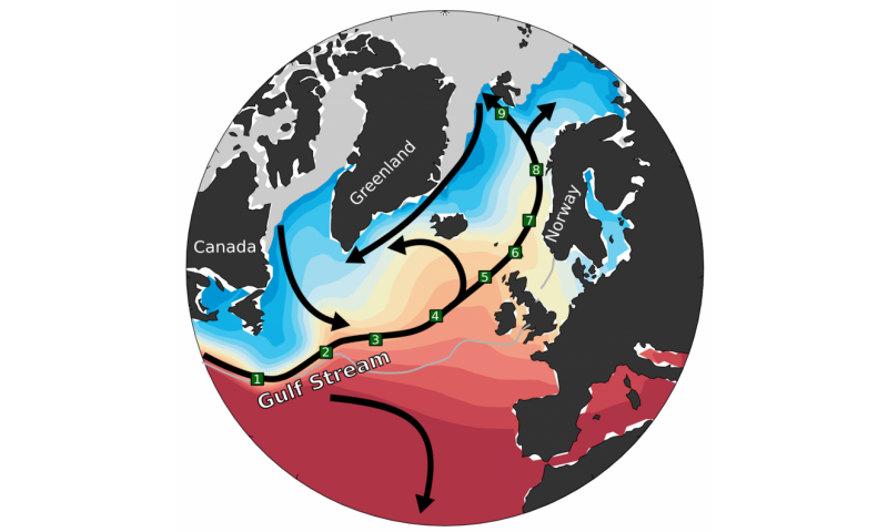 The ocean predicts future northwestern European and Arctic climate