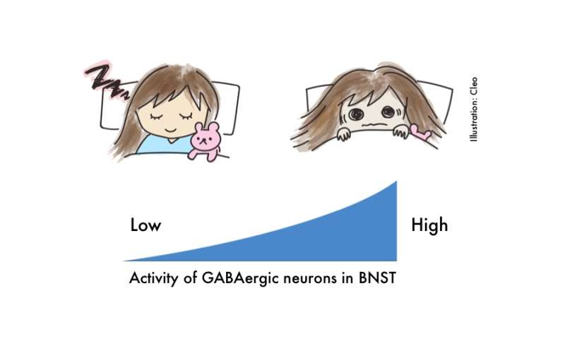 The secret connection between anxiety and sleep
