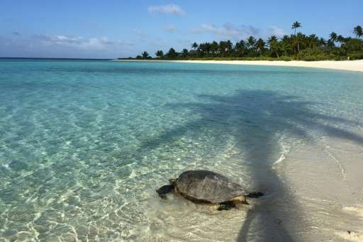 The tiny, palm-fringed atoll of Tetiaroa was once a favourite holiday spot for Tahitian royalty before the late American movie s
