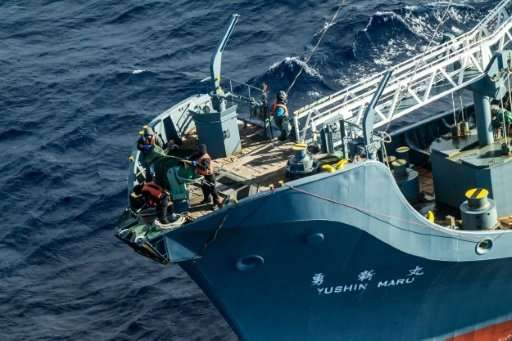 The whalers are heading for the Antarctic