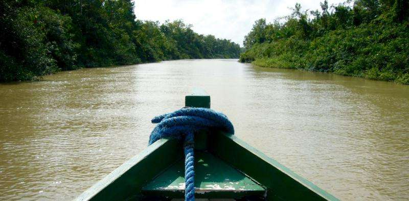 The world protests as Amazon forests are opened to mining