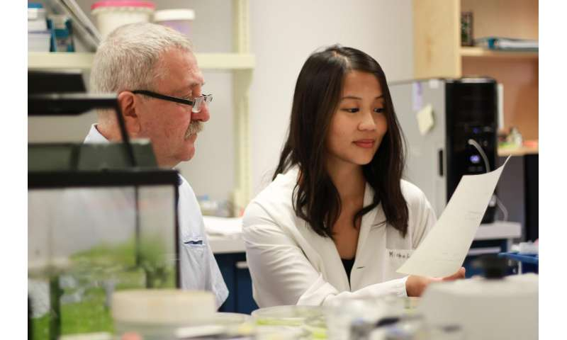 UAlberta and McGill scientists uncover a hidden calcium cholesterol connection