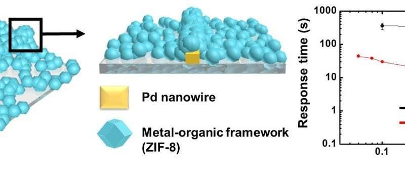Ultra-fast and ultra-sensitive hydrogen sensor