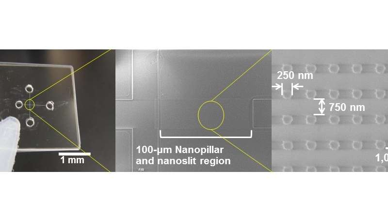 Ultrafast detection of a cancer biomarker enabled by innovative nanobiodevice