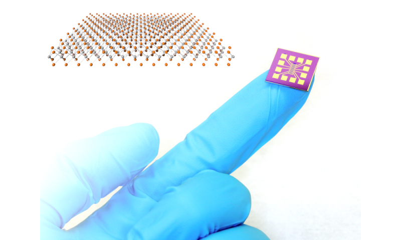 Ultra-fast, ultra-sensitive PtSe2 gas sensors