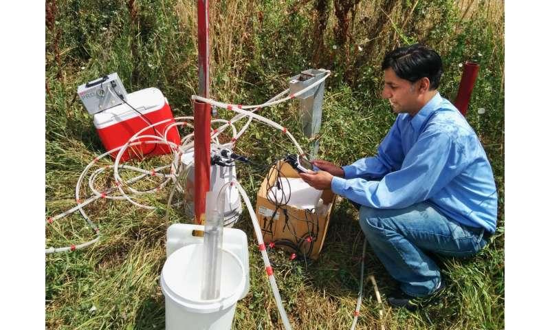 USU researchers develop genetic tool to improve arsenic studies