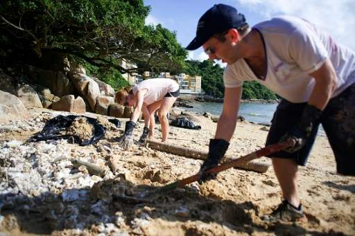 Volunteers braved sweltering heat and humidity to comb one of the worst-affected beaches, filling black bin bags with the lumps