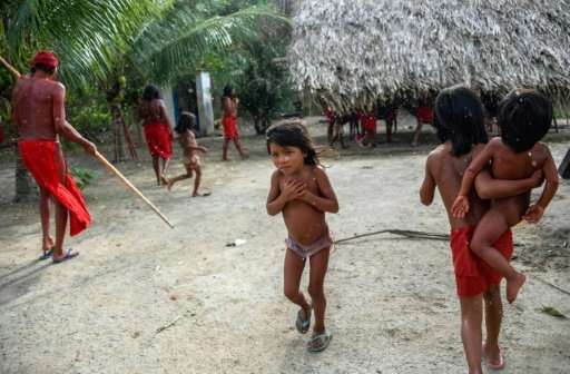 Waiapi Children In Manilha Village Brazils Amapa State