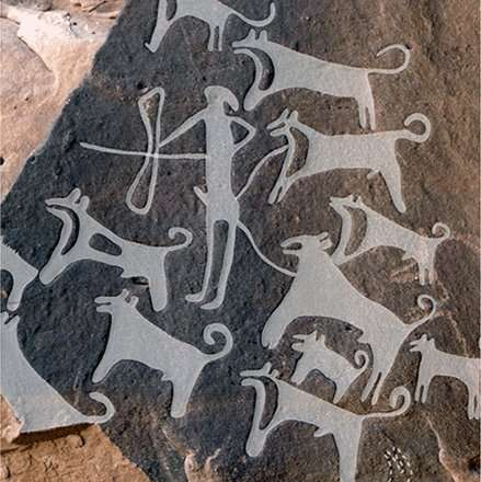 Wall carvings in Saudi Arabia appear to offer earliest depiction of dogs