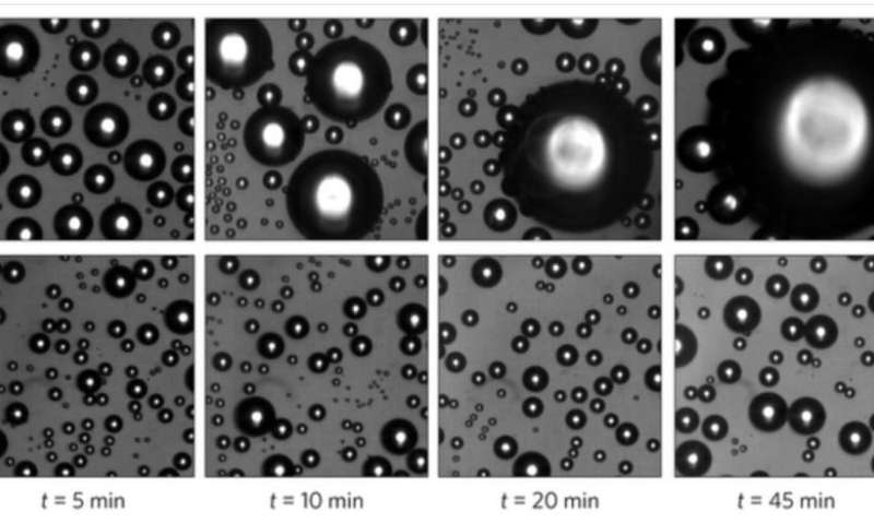Water-repellent nanotextures found to have excellent anti-fogging