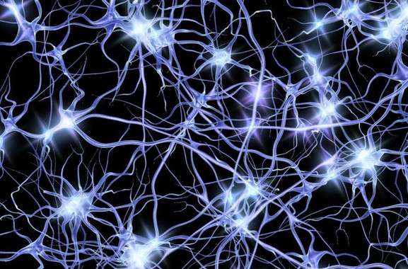 'Waves' of neural activity give new clues about Alzheimer's
