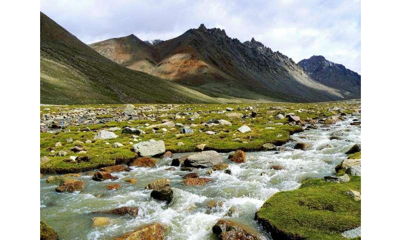 Weathering of rocks a poor regulator of global temperatures