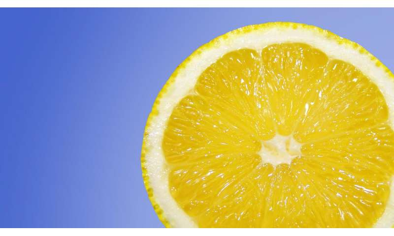 When life gives you lemons, make bioplastics!