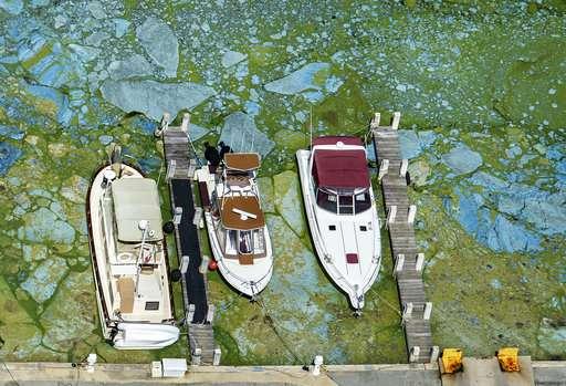 Floridas Building Boom Threatens Wildlife Rich Lagoon