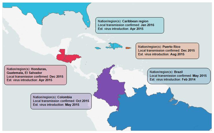 Zika virus likely circulated in Americas long before detection ... on japanese encephalitis map, powassan virus map, yellow fever map, west nile virus map,