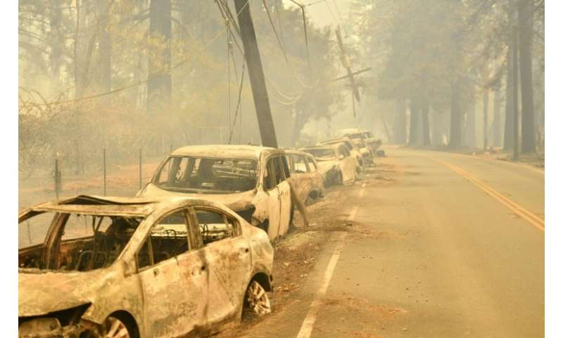 Abandoned vehicles sit on the side of a road, destroyed by flames, in Paradise, north of Sacramento, California