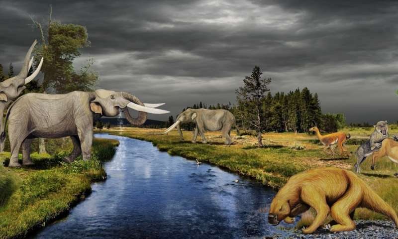 A portrait of ancient elephant-like mammals drawn from multiproxy analysis