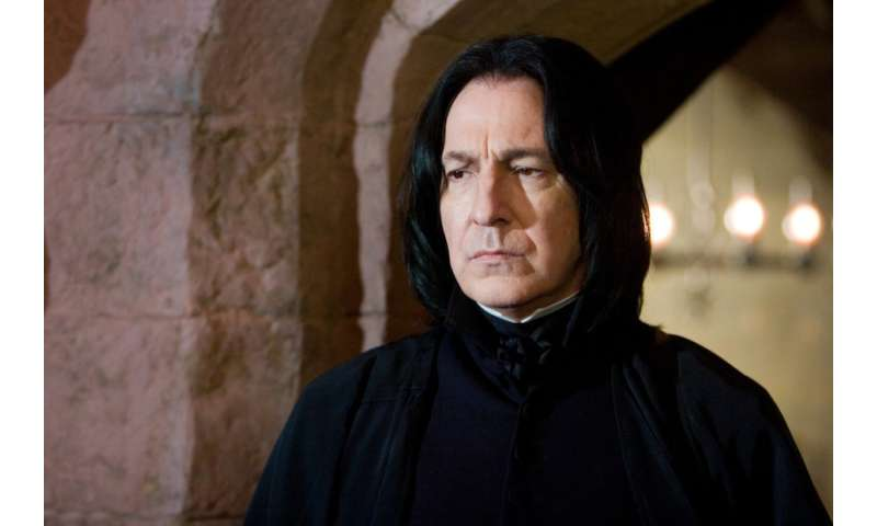 A professor's study of the fictional Hogwarts faculty
