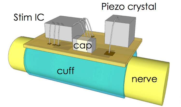 Berkeley engineers build smallest volume, most efficient wireless nerve stimulator