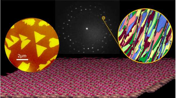 Borophene advances as 2D materials platform