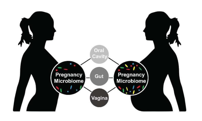 Characterization of pregnancy microbiome reveals variations in bacterial diversity