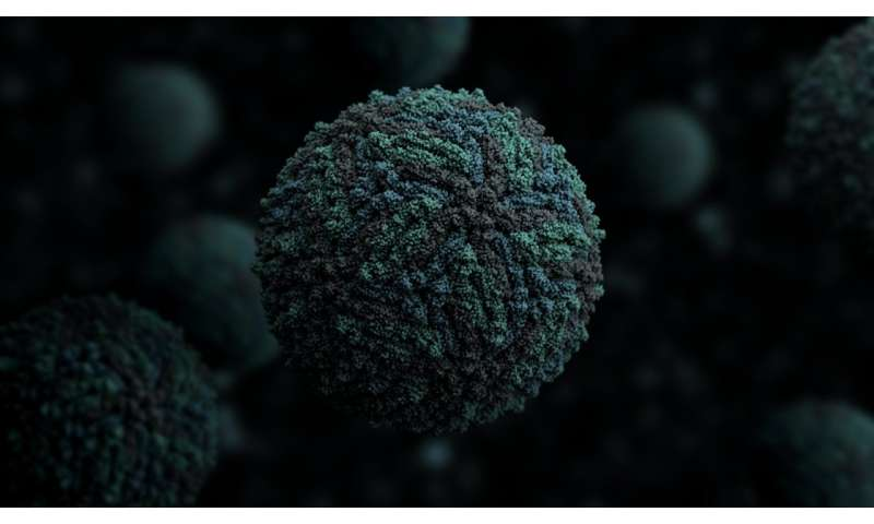 Compound made inside human body stops viruses from replicating