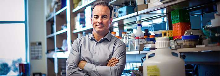 CRISPR screen reveals new targets in more than half of all squamous cell carcinomas