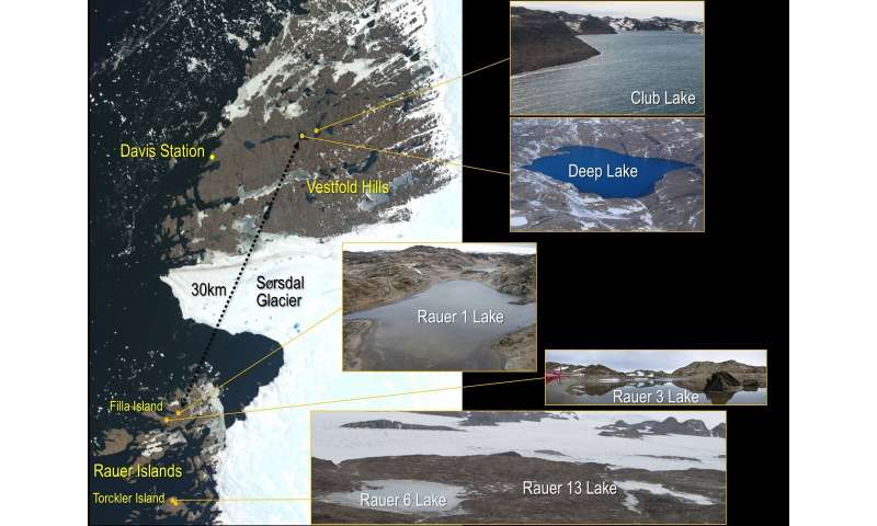 Defining a Pan-Genome for Antarctic Archaea