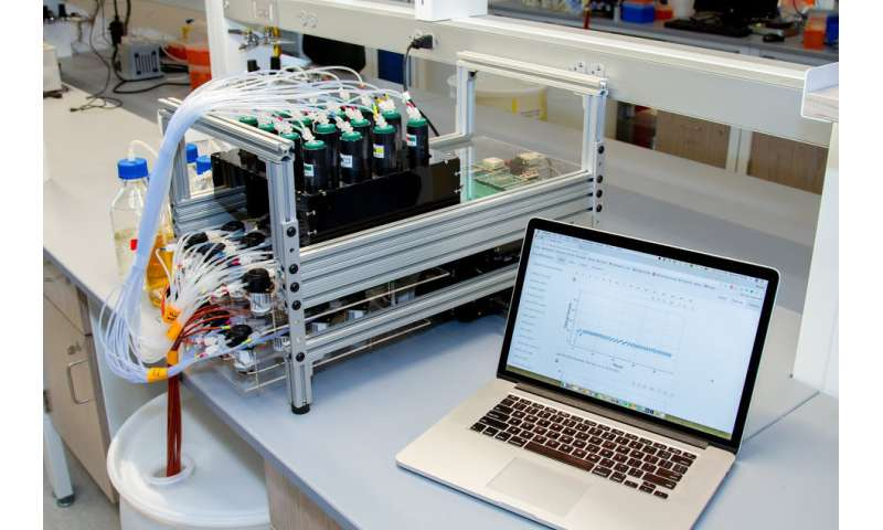 DIY brings high throughput to continuous cell culturing
