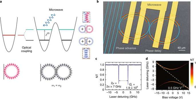 **Electronically programmable photonic molecule