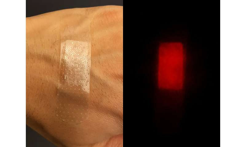 Far-red fluorescent silk can kill harmful bacteria as biomedical and environmental remedy