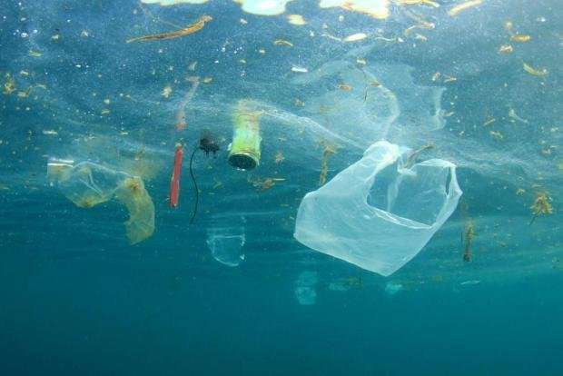 Focusing on microplastic in honey or beer masks a much bigger problem